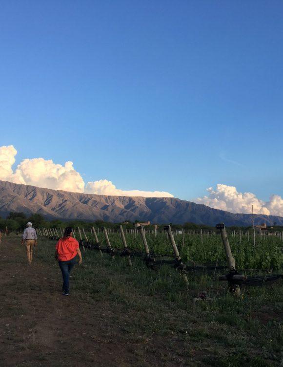 Escapada sustentable a Traslasierra y San Javier
