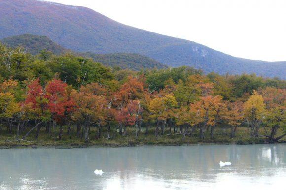 5 ideas de destinos para viajar en otoño por Argentina